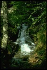 Un tratto dell'Aniene presso Fiumata