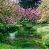 I giardini di Ninfa, il paradiso romantico