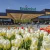 Il parco Keukenhof riapre al pubblico per la sessantasettesima edizione