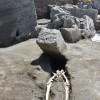 """Pompei, rinvenuti resti di un """"fugitivo"""" nei nuovi scavi"""